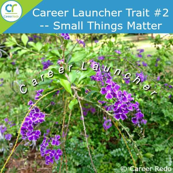 Part of your career launcher - remember small things matter